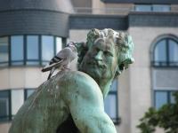 pigeon_statue
